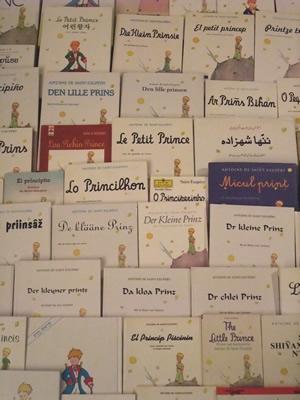 http://www.sieclebleu.org/images/Images%20LPP/petitprince.jpg